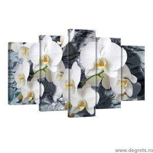 Set Tablou Canvas 5 piese Orhidee 1