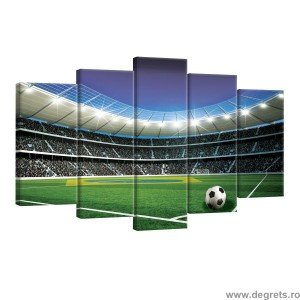 Set Tablou Canvas 5 piese Stadion 1