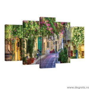 Set Tablou Canvas 5 piese Strada cu flori 1