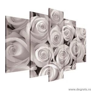 Set Tablou Canvas 5 piese Buchet de trandafiri albi