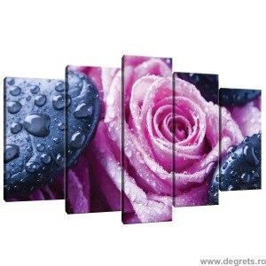 Set Tablou Canvas 5 piese Trandafiri relaxare
