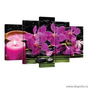 Set Tablou Canvas 5 piese Orhidee 4