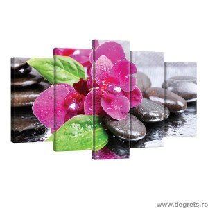 Set Tablou Canvas 5 piese Orhidee Zen 2