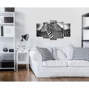 Set Tablou Canvas 5 piese Zebra alb si negru