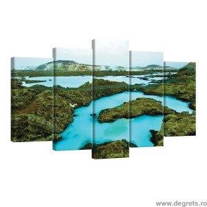 Set Tablou Canvas 5 piese Natura 2