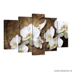 Set Tablou Canvas 5 piese Orhidee alba