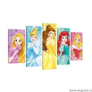 Set Tablou Canvas 5 piese Printese Disney 7