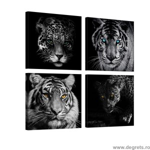 Set Tablou Canvas 4 piese Predatori