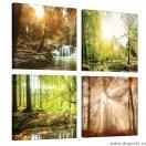 Set Tablou Canvas 4 piese Peisaje de padure 1