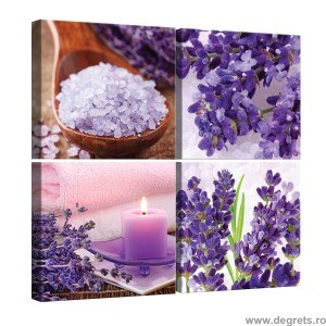 Set Tablou Canvas 4 piese Aromaterapie 3