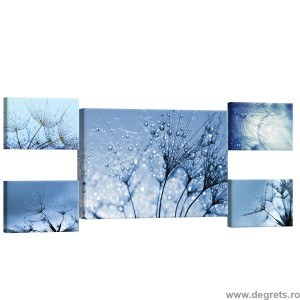 Set Tablou Canvas 5 piese Papadii 3D abstractie 1