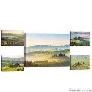 Set Tablou Canvas 5 piese Toscana