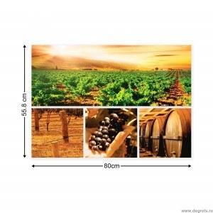 Set Tablou Canvas 4 piese Vin