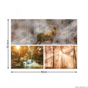 Set Tablou Canvas 3 piese Padure de poveste