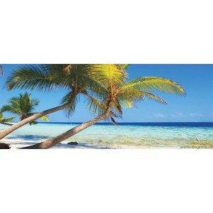 Fotografie tapet Plaja tropicala 3 S Vlies