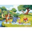 Fotografie tapet Winnie the Pooh si prietenii sai L