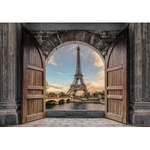 Fotografie tapet Intrare in Paris 3D XL