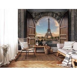 Fotografie tapet Intrare in Paris 3D L