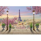 Fotografie tapet Paris terasă