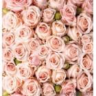 Fotografie tapet buchet de trandafiri 2