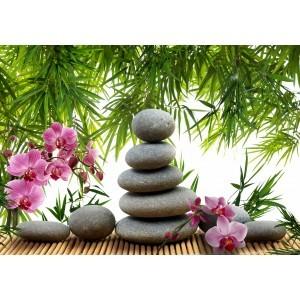 Fotografie tapet Meditatie