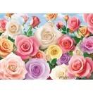 Fotografia tapet trandafiri colorati
