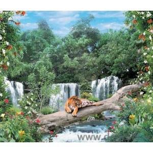 Fotografie tapet tigru si cascada