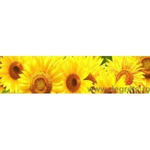 Panou decorativ floarea soarelui