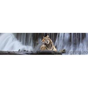 Panou decorativ tigru 1