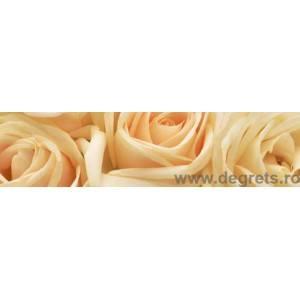 Panou decorativ trandafiri