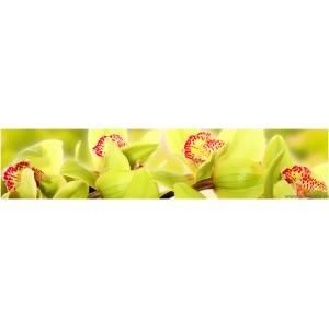 Panou decorativ orhidee 10