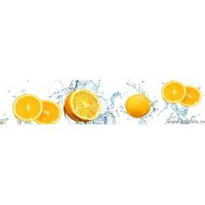 Panou decorativ Portocale 2