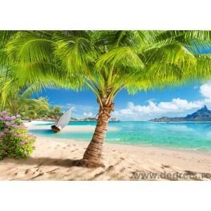 Fotografie tapet sub palmier