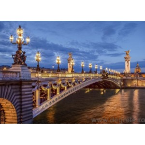Fotografie tapet podul Alexandru III din Paris